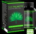 Saw Palmetto: männliche Krankheiten vergessen Wo kaufen? Preis? Medizinische Meinung und Benutzer. Wie benutzt man?
